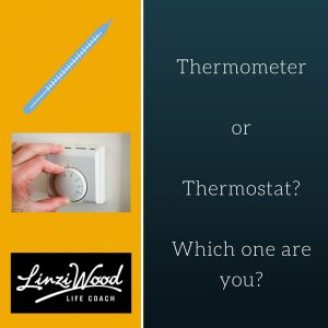 Thermometer or Thermostat?